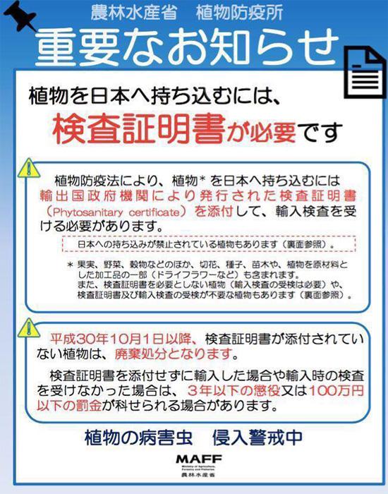Quy định hành lý mang sang Nhật