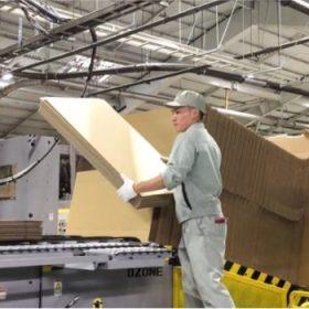 Đơn sản xuất thùng carton